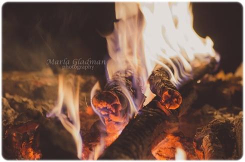 bonfireweb